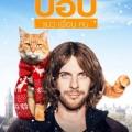 A-Street-cat (1)