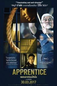 APPRENTICE   (6)