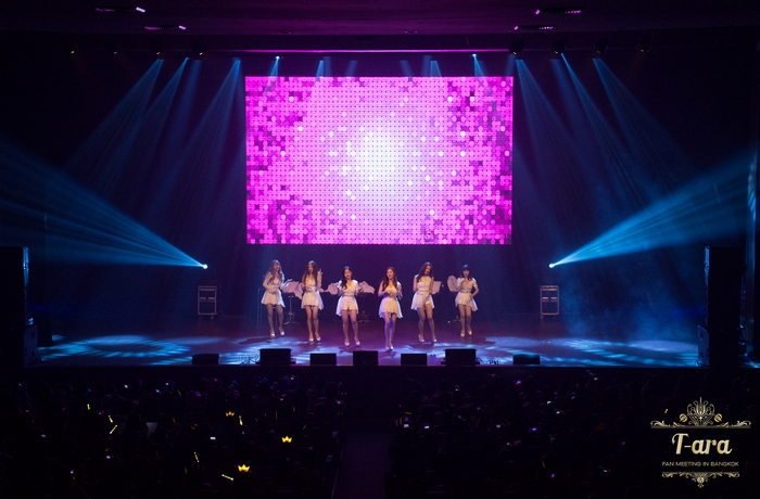 T-ara Fan Meeting  (8)